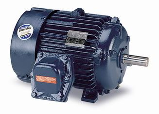 Kiln Duty Electric Motors